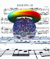 Musica para el cerebro